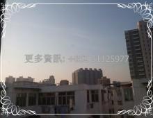順煒工業大廈 Shun Wai Ind Bldg